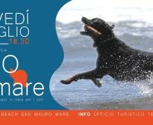 San Mauro Mare 1° spiaggia balneabile dai cani
